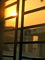 Good Morning Kolkata!! (Supratim Ghatak) Tags: morning light sun india holiday color colour sunrise canon day bokeh good powershot bliss goodmorning kolkata bohek supratim sx110is canonpowershotsx110is supratimghatak