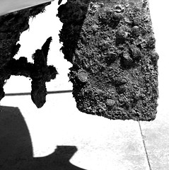 167. patina (joe.laut) Tags: bw juni square boot boat blackwhite sw schwarzweiss schatten muschel 2015 incoloro joelaut 3652015
