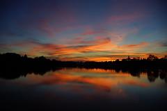 _DSC7506 (wdeck) Tags: sunset freiburg abendstimmung seepark