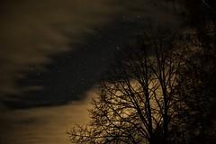 silent night (camerito) Tags: silent night stille nacht shot nachtaufnahme sternenhimmel wolken sky stars clouds tree baum camerito nikon1 j4 austria carinthia kärnten österreich flickr unlimitedphoto