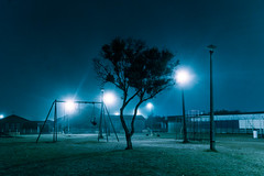 Untitled (elsableda) Tags: night midnight elsa bleda cape town southafrica tree park light lights shadow swing sky blue