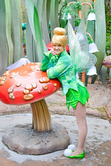 Pixie Hollow (ClassyChassy_) Tags: pixiehollow disneyfacecharacters tinkerbell disneyfairies disneyland