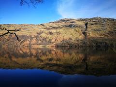 House on Loch Lomond (Steven Tregidgo) Tags: scotland lochlomond huaweip9 trossachs landscape