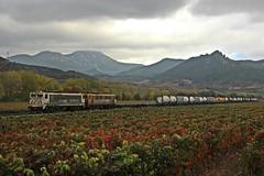 Viñedos en otoño (MACD 3) Tags: renfeoperadora mercancias 269050 269060 teco mitsubishi caf train tren