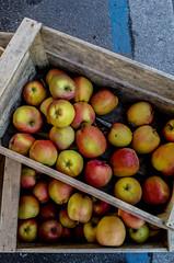 2017-02-18 – Mangeons des pommes (Henri Dès) (Robert - Photo du jour) Tags: février 2017 mangeonsdespommes henridès pommes caisse cageait marché rouge manger regarddunjour