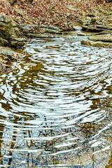 20170330-untitled shoot-3745-Edit.jpg (jgillmissouri) Tags: pond 3stop oakhollow 2017 landscape march nikond810 jack