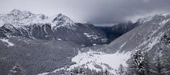 Swiss Alps (jack.mihlenstedt) Tags: white tamron2470mm nikond750 nikon mountaintrain italianalps alps winter skiing snow mountains berninaexpress swissalps bernina express