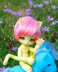 Kittens with poney (lorrainebmcfly) Tags: kinoko nia haine poney toy kinokojuice