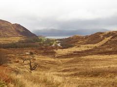 8538 Facing Loch Linnhe and Ardgour over Inversanda river basin (Andy - Busyyyyyyyyy) Tags: 20170318 ccc clouds day9 mist mmm morvern scotland