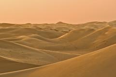 Spot the Camel (Paul Rowbotham) Tags: abudhabi 2sand dunes sunset sand camel