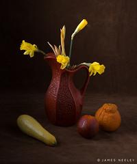 Daffodils (James Neeley) Tags: stilllife santafeworkshops fineart jamesneeley