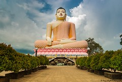 Kande Viharaya Temple (magicallights) Tags: ceylon srilanka bentota beach travel travellog buddha buddhatemples buddhisim natgeo natgeotravel nikond3000 kandeviharayatemple bigbuddha