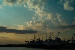 arasaki fishing harbor (N.sino) Tags: m9 summiluxm50mm fishingharbor arasaki miura boat 荒崎 三浦半島 漁港 漁船
