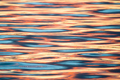 Sea (john white photos) Tags: ocean pink blue sunset sea orange nature water bay coast waves australia calm ripples southaustralia coffinbay eyrepeninsula