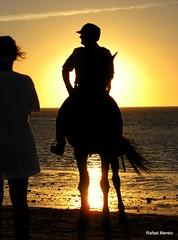 El ltimo caballero (Guervs) Tags: sunset espaa horse backlight contraluz atardecer caballos andaluca spain guadalquivir silhouettes races cdiz carreras sanlcar sanlcardebarrameda sliuetas