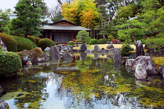 Japanese garden IMG_8475 (Xiyeimages) Tags: world park travel trees red sky cloud white house lake plant reflection building tree green tower castle art heritage history classic tourism monument water pool beauty japan stone forest river garden relax flow japanese tokyo design waterfall site spring ancient kyoto asia stream quiet general tea outdoor traditional style peaceful landmark calm fresh unesco east enjoy zen greenery serene transparent shrub oriental grassland royalty nihon shrubbery nijo tokugawa teien leyasu aichitecture relaxction