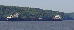 Algosteel (Jacques Trempe (105,000 + views)) Tags: river ship quebec stlawrence stlaurent fleuve navire stefoy algosteel
