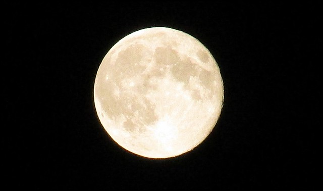 IMG_2624 Super Moon 2