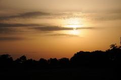 Morgensonne an der Alten Sorge; Meggerdorf, Stapelholm IR9_1956 (Chironius) Tags: schleswigholstein deutschland germany allemagne alemania germania германия niemcy morgendämmerung morgengrauen утро morgen morning dawn matin aube mattina alba ochtend dageraad рассвет amanecer himmel wolken gegenlicht meggerdorf clouds wolke nube nuvole sky nuage облака ciel cielo hemel небо gökyüzü sonnenaufgang sunrise zonsopgang восходсолнца morgens dämmerung