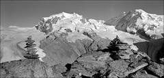 Massif du Mont Rose, Suisse (Yannick Michel) Tags: alps alpes schweiz switzerland suisse gornergrat montrose rodinal150 wallis cairn valais yellowfilter acros100 6x12 lyskamm pointedufour nikkorsw90mm massifdumontrose dayiback chamonix5x7