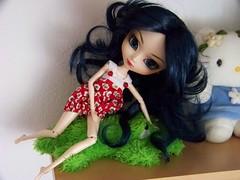 Mi trofeo, rndete cocodrilo! :P ( Natsumi333 ) Tags: diana pullip estantera pullipwonderwoman