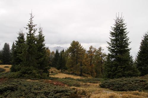 Wanderung zum Tessenberger See am 9.10.2013