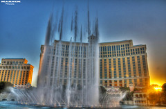 And there they go (Bill Maksim Photography) Tags: las vegas food newyork paris fountain volcano time lasvegas tiger nevada palace location casino hangover gordon steak heat shows mirage times bellagio temperature wynn mgm burlesque hdr slots mountian ramsay maksim volcanoe caesers
