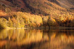 Buttermere Reflections in late afternoon light #3 (GOLDENORFE) Tags: lakedistrict butermere
