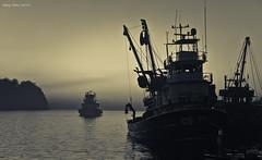 Denizde karart var (oskaybatur) Tags: akakoca dzce trkiye turkey trkei splittoning misty fishingboat balklar november kasm 2013 cumartesi saturday sigma1770f284dcmacrooshsm sigma1770 pentaxkr pentax pentaxart sunset sky autumn hamsi fish sea karadeniz sonbahar justpentax