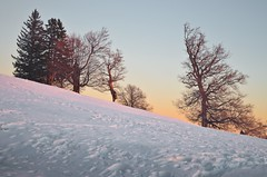 shadows on the sky (dccalin05) Tags: winter sunset white snow cold ice landscape nikon romania greatphotographers nikonromanianclub d5100 outstandingromanianphotographers ringexcellence greaterphotographers dblringexcellence greatestphotographers tplringexcellence eltringexcellence