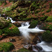 la vologne près de la cascade charlemagne