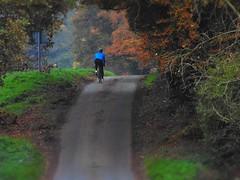 Sunday bike ride (SimonTHGolfer) Tags: england bike bicycle countryside suffolk ride weekend sony sunday cybershot leisure activity rider dsc h200 pixlr flickrandroidapp:filter=none
