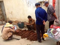 Yunnan Tobacco (cuppakiki) Tags: china market yunnan tobacco wase