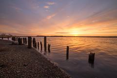Bass River Sunrise (reclaimednj) Tags: water sunrise river newjersey unitedstates nj 2014 tuckerton canon6d bassrivertownship rokinon14mm