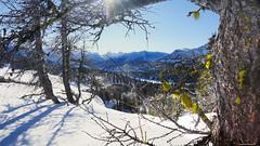 Lichen and view (RKop) Tags: canada banff slta77vq 1650ssmf28 raphaelkopanphotography