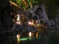 Furusato Onsen, Sakurajima, Kagoshima (Mr. Ansonii) Tags: tree japan volcano shrine kagoshima     hotsprings kyushu sakurajima      vision:outdoor=0541 vision:dark=0568 vision:plant=0834