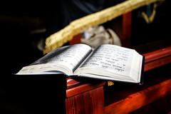 Siddur ({fuh•tog•ruh•fee} via Rohama Bruk) Tags: portrait books synagoge jewish jews shul barmitzvah siddur yids youngphotographers