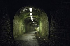 Light at the end of the tunnel (Lobhdain) Tags: old light green mill train moss path railway tunnel walkway brickwork midlothian penicuik colorizing tectures
