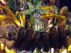 Salgueiro_Carnaval 2014_Rio de Janeiro (FM Carvalho) Tags: carnival brazil rio brasil riodejaneiro de samba do shot sony cybershot carnaval escola sonycybershot cyber passarela sambdromo salgueiro marqus escoladesamba sapuca marqusdesapuca sambaschool passareladosamba carnavaldoriodejaneiro sambadrome riocarnival carnavalcarioca carnavaldorio sambdromodorio sambdromocarioca sambdromodoriodejaneiro hx9v sonyhx9v carnaval2014
