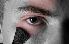 173/365 - Adding Colour (Forty-9) Tags: macro june photoshop canon painting studio flash brush brushes 365 monday softbox efs1785mmf456isusm day173 2015 project365 strobist diysoftbox efslens strobism 173365 macromonday yongnuo eos60d project3652015 addingcolour 3652015 speedliteyn560iv 22ndjune2015