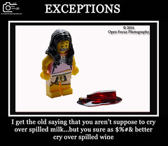 EXCEPTIONS (76 Minds) Tags: humor toys lego creative starwars funny geek