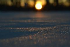 peace within (joy.jordan) Tags: snow light texture bokeh sunset winter nature