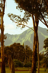 Room WIth A View (guillermo_romero) Tags: princeville trees kauai golfcourse mountains