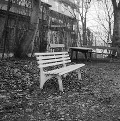 bench (rotabaga) Tags: sweden sverige svartvitt blackandwhite bw bwfp göteborg gothenburg johanneberg lomo lomography lubitel166 ilford r09 mediumformat mellanformat 6x6 120