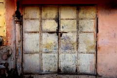 (carol murray) Tags: india jodhpur 032317explore29