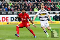 Gladbach vs Bayern München-49.jpg (sushysan.de) Tags: bayern bayernmünchen borussiamönchengladbach bundesliga dfb dfbpokal dfl fohlen gladbach mgb münchen pix pixsportfotos saison20162017 vfl1900 pixsportfotosde sushysan sushysande