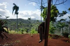 Crank (gruen.tee) Tags: cuba kuba travel baracoa hurricane destruction crank wood palms soil sky sony sonyalpha sonyalpha7 caribics caribe caribbean vacation backpacking