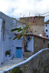 DSC_0485 (jsmalleck) Tags: chefchaouen morocco north africa blue city chaouen