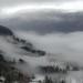 Voss Fog