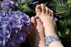 yours bluely (photos4dreams) Tags: blue summer sun feet glitter foot petals toes nail nagellack polish selbstportrait susannah bltenbltter secretgarden hortensie selfie hortensia zehen fus glitzer selfies summerfeet photos4dreams photos4dreamz fse p4d